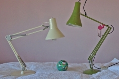 'Anglepoise Offspring' by Mike Thurner