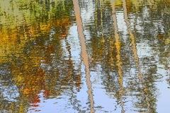 'Reflections' by Robert Edmondson