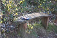 'Rustic Bench' by David Ager