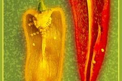 'Cut Peppers' by Angela Rixon