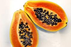'Papaya' by Angela Rixon