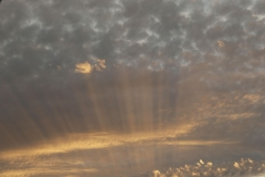 'Crepuscular Rays' by Paul Smith