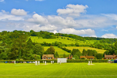 'Saturday Cricket At Pixham' by Peter Shelley