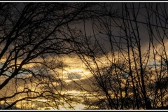 'Nightfall' by Peter Shelley