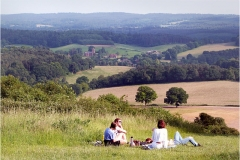 'Newlands Corner Picnic' by Millicent Lake
