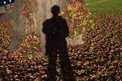 'Autumn Shadow' by Robert Edmondson