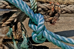 'Blue Rope' by Angela Rixon