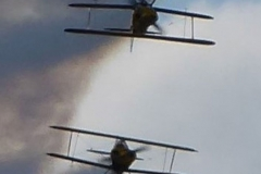 'Biplanes' by Caroline Brown