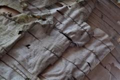 'Birch Bark' by Robert Edmondson