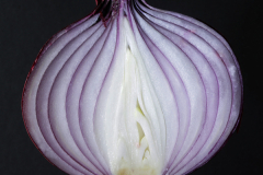 'Onion' by Tony Pernet