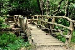 'Woody Curved Bridge' by Graham Speed