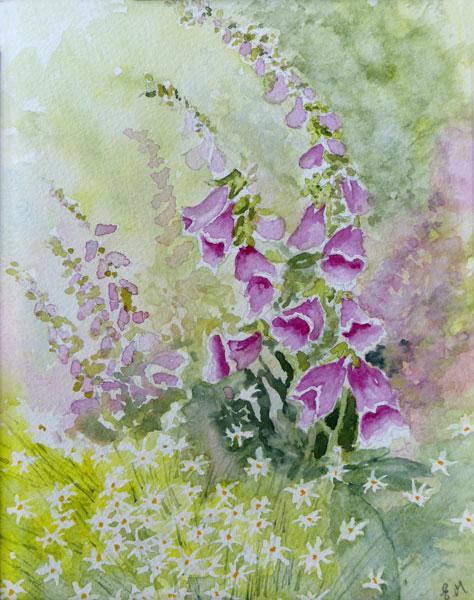Foxgloves by Elaine Major