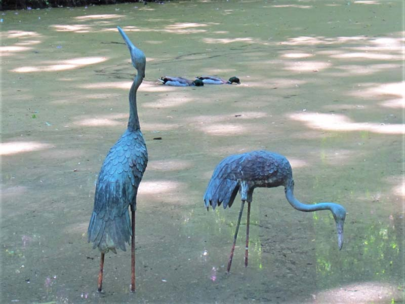 'Blue Herons' by Jonathan Grant