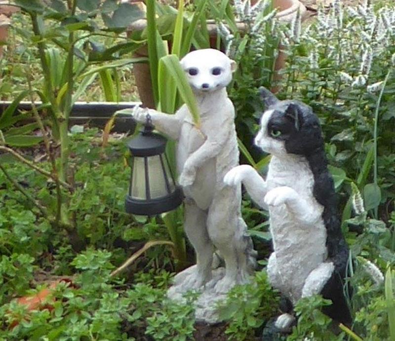 Cat and Meerkat (Caroline Brown)